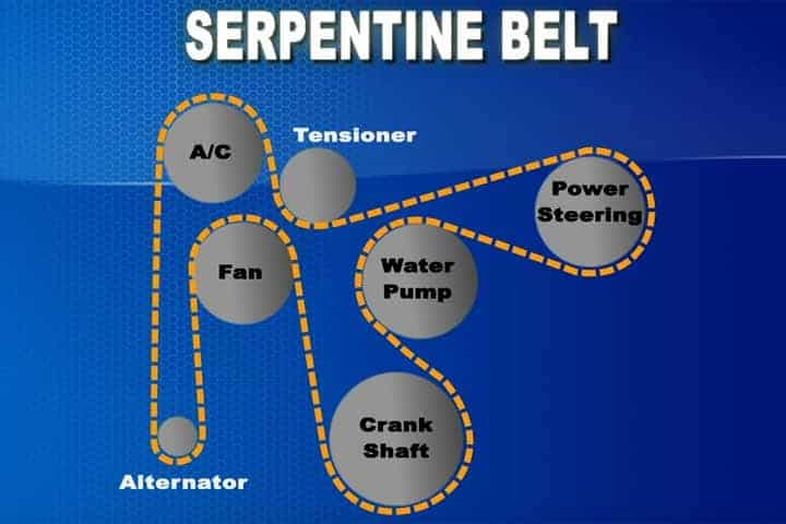 What Does A Serpentine Belt Do >> Serpentine Belt Doc Able S Auto Clinic Inc